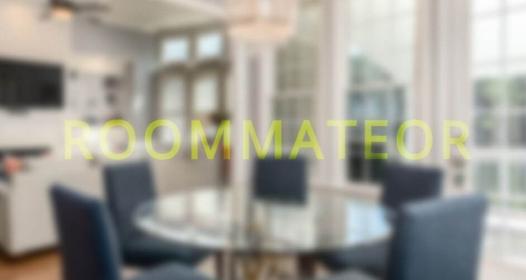 Cover slika niške IT firme Roommateor