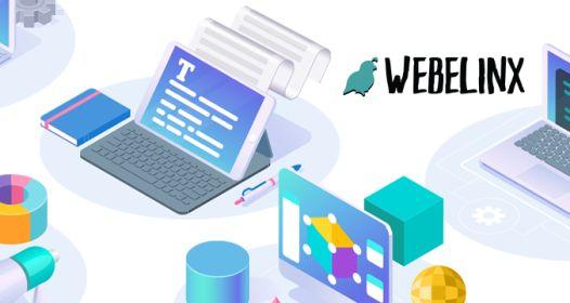 Cover slika niške IT firme Webelinx